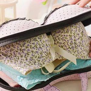 COPY - New Bra Bag travel tote lingerie stockings…
